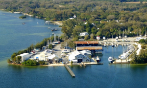 Palmetto, Florida